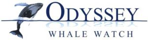 Odyssey Whale Watch Tours